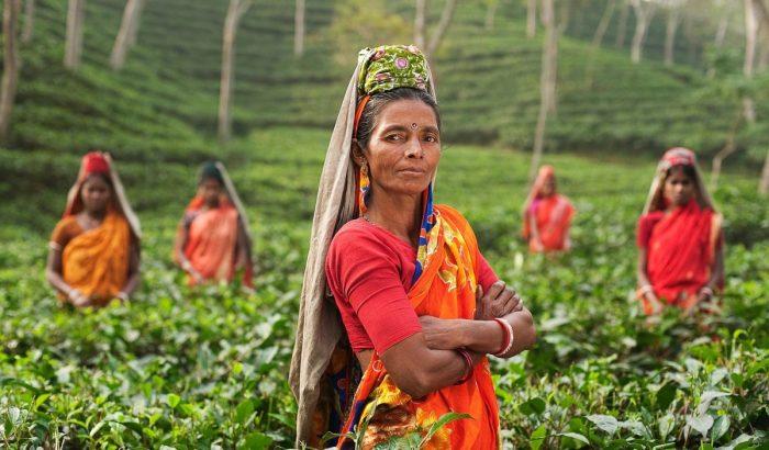 Z indického Ásámu do Bhútánu
